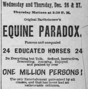 Advertisement for performances of Equine Paradox at Elmira Opera House, December 26-27, 1894, found in Star-Gazette (Elmira), Dec. 27, 1894, p. 7.