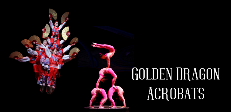 Golden Dragon Acrobats March 7th 2020